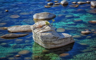 Обои Bonsai Rock, камни, скала, природа, озеро, Lake Tahoe