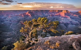 Картинка Grand Canyon, National Park, Arizona, Landscape