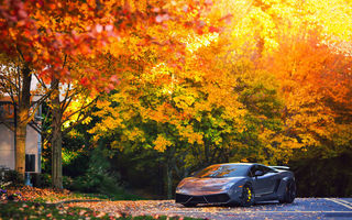 Обои lamborghini, осень, gallardo, lp570-4, superleggera, деревья