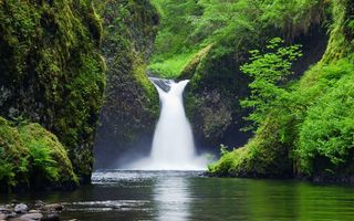 Картинка Punchbowl Falls, Columbia River Gorge, Eagle Creek