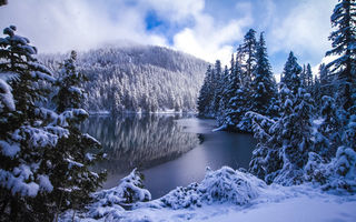 Обои Mowich Lake, Mount Rainier National Park, Washington State