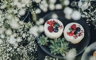 Картинка drink, food, yummy, cake, plant, succulent, cheesecake, fruit, cacti, plate, cactu, cactus