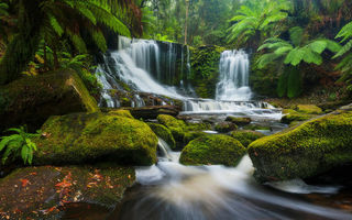 Обои Mount Field National Park, Австралия, камни, Tasmania, Водопад Подкова, Национальный парк Маунт-Филд, река, Horseshoe Falls, каскад, Australia, лес, водопад, Тасмания