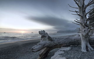 Обои Olympic National Park, пейзаж, Rialto Beach