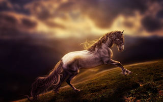 Обои rendering, digital art, horse, art, run