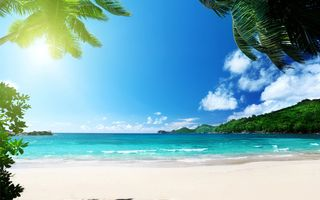 Обои пальмы, paradise, берег, песок, пляж, tropical, море, vacation, beach, summer, sea, ocean, sunshine, тропики, palms