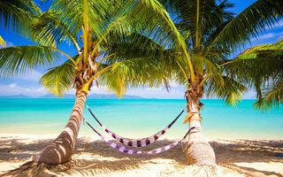 Обои пальмы, palms, берег, sea, ocean, summer, tropical, paradise, пляж, sunshine, vacation, море, beach, тропики, hammock, песок