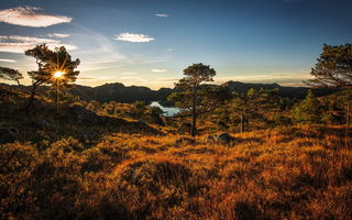 Обои autumn, norway, landscape