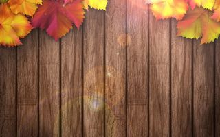 Обои autumn, осенние листья, texture, wood, leaves, colorful, дерево