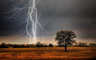 Обои grass, storm, Lightning, clouds, landscape, farm, tree, plants, field, nature