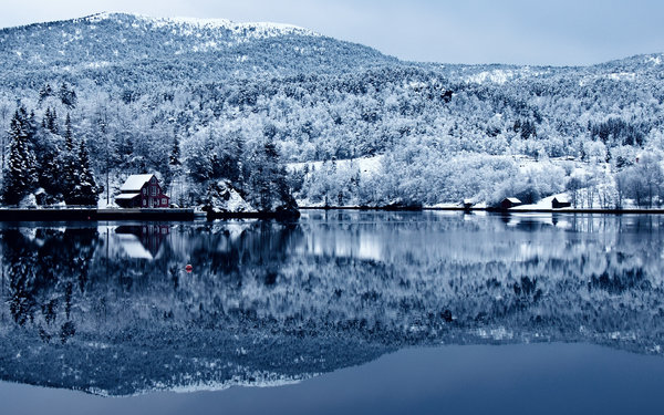 Обои tree, forest, lake, cottage, snow, water