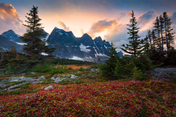 Обои canada, fall color surrounding the ramparts - the ramparts, tonquin valley, alberta, jasper national park
