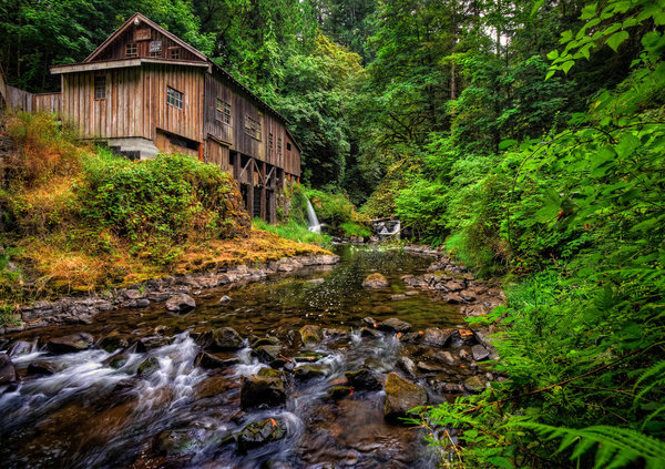 Обои лес, washington, cedar creek grist mill, вудленд, woodland, мельница, штат вашингтон, река