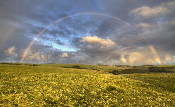 Обои usa, double rainbow, barley fields, montana