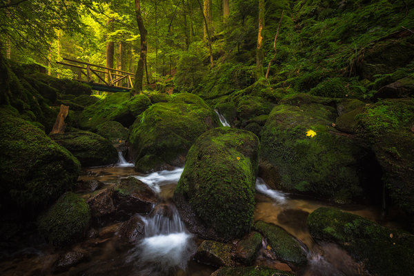 Обои creek, Baden-Wurttemberg, Gertelbach Waterfall, Germany, Schwarzwald