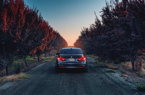 Обои German, Sport, F80, BMW, Car, Sunset, Rear, 335i