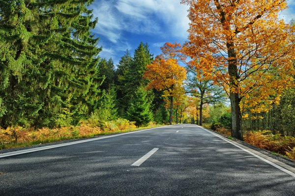Обои дорога, листья, autumn, парк, colorful, road, осень, forest, лес, landscape, деревья, country, tree, park, leaves, fall
